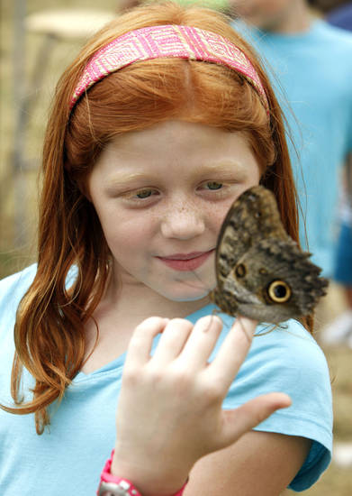 Eight year old Madison Sofsky holds a Morpho butterfly at the butterfly exhibit during the Oklahoma State Fair at State Fair Park in Oklahoma City, OK, Tuesday, September 17, 2013,  Photo by Paul Hellstern, The Oklahoman