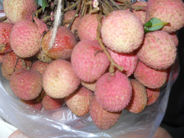 Seasonal Fruit of Bangladesh