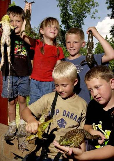 FROG RACE: These cousins, all second generation Camp DaKaNi campers, show off the frogs they entered in the turtle and frog races Wednesday at the camp. The children went to a creek Tuesday night and caught their frogs. Bottom, l-r, Derek Moates, 7, and Jake Prior, 8. Top row, from left, are Colby Moates, 5, Sarah Kerr, 4, and Jared Kerr, 10.  Camp DaKani is an Oklahoma City day camp sponsored by Camp Fire USA. Staff photo by Jim Beckel.