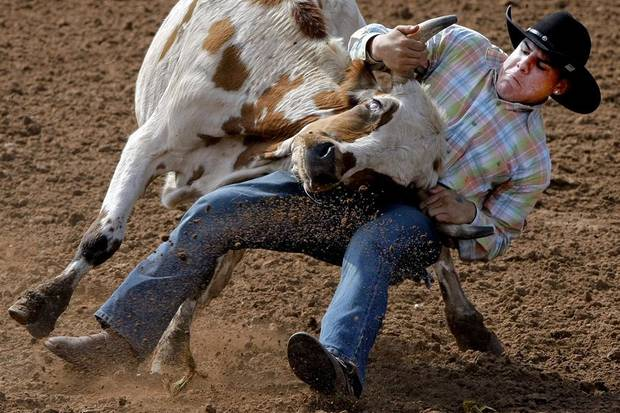 IFYR: Ramon Ceballos, of Miami, wrestles a steer during the International Finals Youth Rodeo at the Heart of Oklahoma Expo Center in Shawnee, Okla. Wednesday, July 14, 2010.  Photo by Miranda Grubbs, The Oklahoman ORG XMIT: KOD