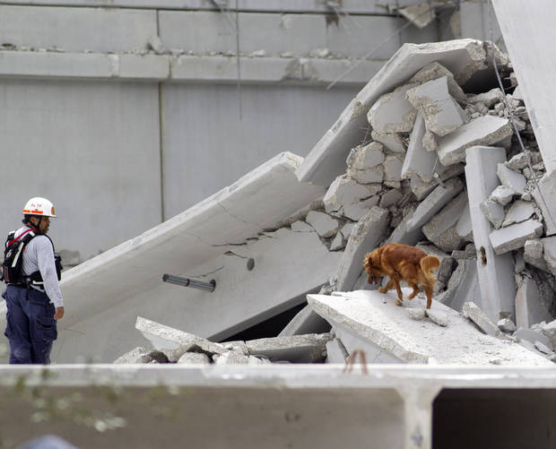 A rescue worker watches his search dog look through the rubble after a section of a parking garage under construction at a Miami-Dade College campus collapsed, Wednesday, Oct. 10, 2012 in Doral, Fla., killing one worker and trapping at least two others in the rubble, officials said. (AP Photo/J Pat Carter)