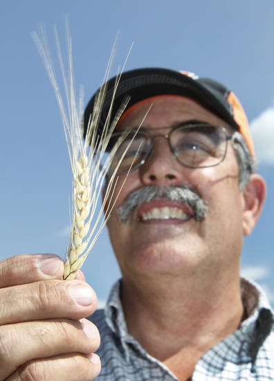 David Gammill talks about the wheat harvest, which is about 2 to 3 weeks away, Tuesday, May 1, 2012. Photo By David McDaniel/The Oklahoman