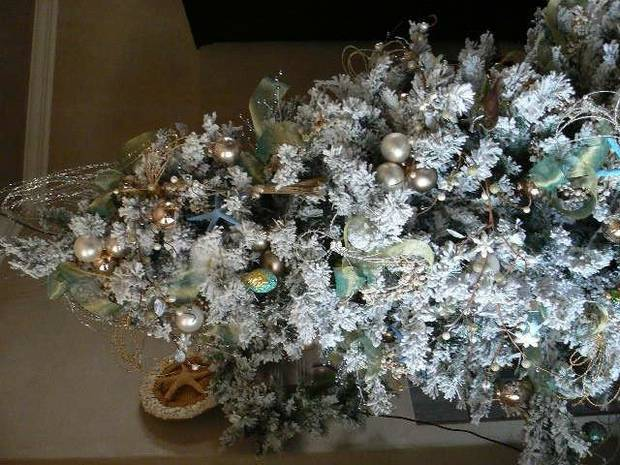 Ms. Johnston's shells highlight this Christmas tree in her new home.<br/><b>Community Photo By:</b> Martha Packett<br/><b>Submitted By:</b> Martha, Midwest City