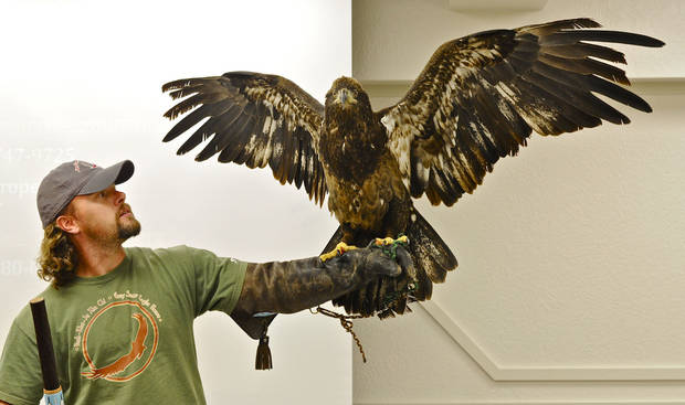 Harley Coleman, an aviary assistant at the Grey Snow Eagle House, has an eagle spread its wings during a presentation for students Tuesday in the Indian Education Program in the Putnam City School District. Photo by M. Tim Blake, for The Oklahoman <strong>M. Tim Blake</strong>