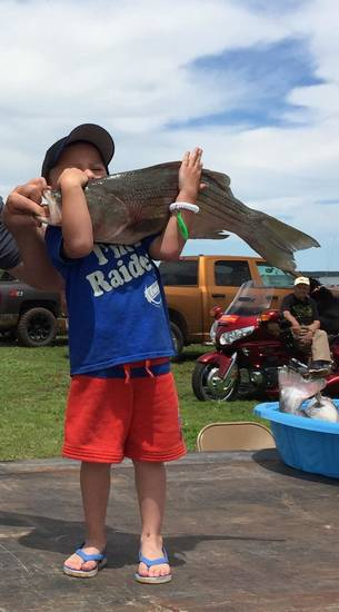 Ledger Lewallen, 4, of Omega caught the largest striped bass hybrid at last weekend's Canton Walleye Rodeo. The fish weighed 9.73-pounds.