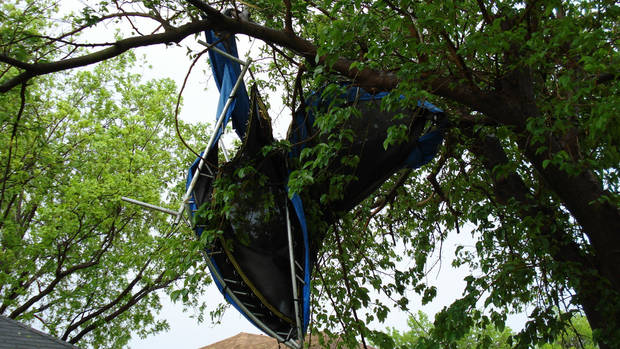 Trampoline in tree<br/><b>Community Photo By:</b> Melissa Bastianelli<br/><b>Submitted By:</b> Melissa, Oklahoma City