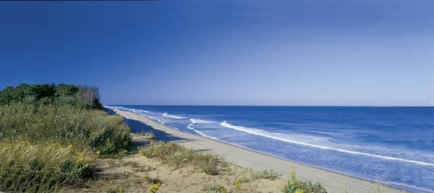 In this photo provided by the Cape Cod Chamber of Commerce, Coast Guard Beach is shown in Cape Cod, Mass. Cape Cod Beach was chosen for the list of Top 10 beaches for 2009. (AP PHOTO)
