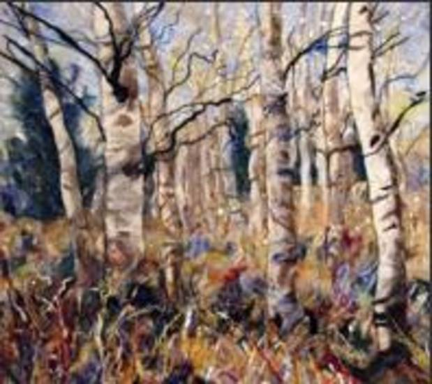 """Aspen Field"" by Pamela Husky. Photo provided"
