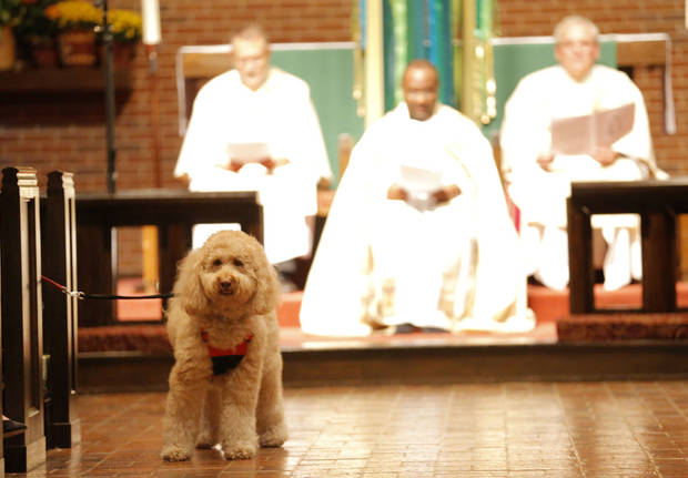 A dog stands in the isle during a service in Celebration of God's Creations with the Blessing of the Animals at St. Augustine of Canterbury Episcopal Church in Oklahoma City. Sunday, Oct. 7, 2012. Photo by Sarah Phipps, The Oklahoman