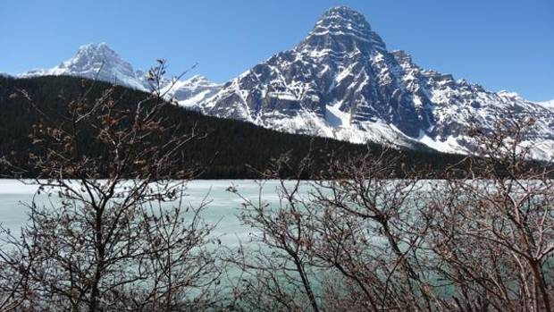 Blue green waters still covered with ice at Lake Louise