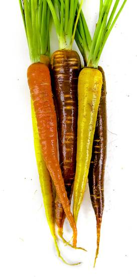 Carrots. Photo by Chris Landsberger, The Oklahoman &lt;strong&gt;CHRIS LANDSBERGER&lt;/strong&gt;