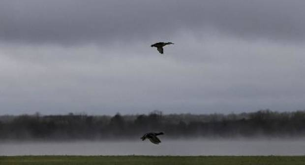 Ducks fly as fog rolls over Lake Hefner during a rain storm, Wednesday, April 10, 2013, in Oklahoma City. Photo by Sarah Phipps, The Oklahoman