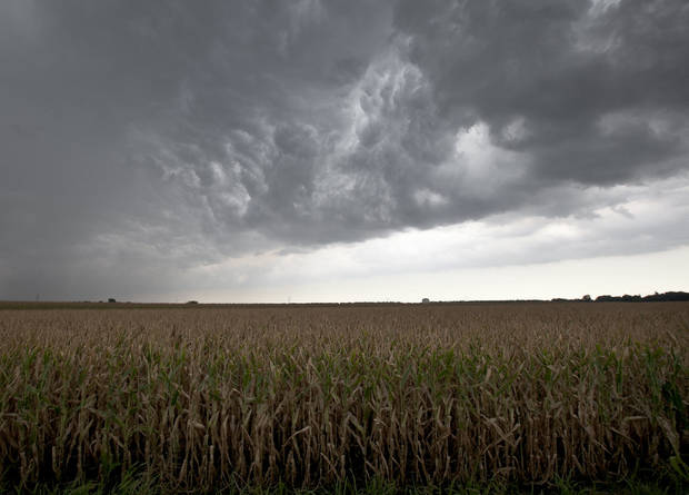 FILE - In this Aug. 8, 2012 file photo, dark clouds from a passing thunderstorm hang over a dry cornfield in Blair, Neb. In 2012, the nation suffered its worst drought since the 1950s, covering 80 percent of U.S. farmland. Grain and food prices soared. (AP Photo/Nati Harnik)