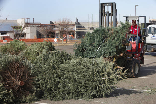 Robert Whalen, with Lowe�s, drops off leftover Christmas trees for recycling on Wednesday at Mitch Park. Photo By David McDaniel, The Oklahoman
