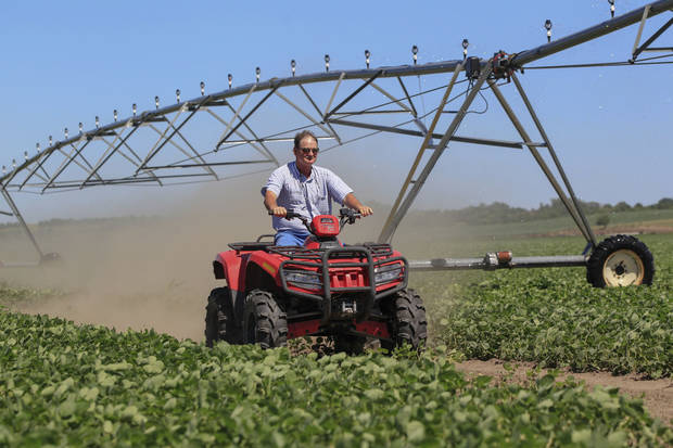 Jim Carlson drives an ATV through a field of soybeans after shutting off the water in his central pivot irrigator in Silver Creek, north of Osceola, Neb. The route of the proposed Keystone XL pipeline runs through this field. Carlson supports turning to county officials and zoning boards to approve resolutions formally opposing the pipeline. AP PHOTO <strong>Nati Harnik</strong>
