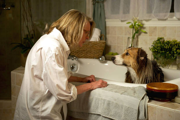 "Diane Keaton and Kasey the dog appear in a scene from ""Darling Companion."" Sony Pictures Classics photo <strong>  WILSON WEBB</strong>"