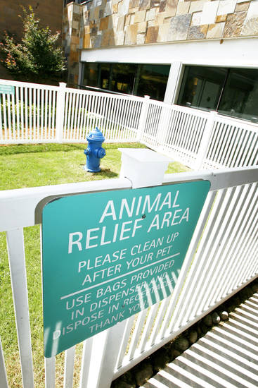 A pet relief area was recently added at Will Rogers World Airport in Oklahoma City. Photo by PAUL B. SOUTHERLAND, the oklahoman