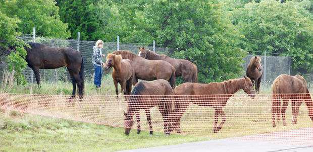 Workers set up a corral Tuesday on Sooner Road at NE 122 after a trailer of horses overturned on the Turner Turnpike.Photo by Paul B. Southerland, The Oklahoman
