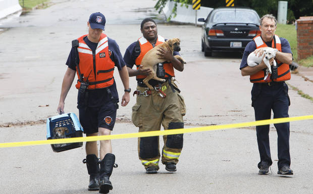 Three Oklahoma City firefighters carry dogs rescued Monday from flooding in The Valley in the Edmond area.Photo by David McDaniel, The Oklahoman