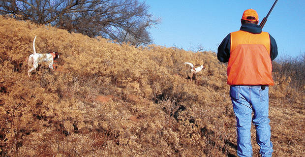 Quail hunting opens Saturday in Oklahoma and next week is the 44th Grand National Quail Hunt in Enid