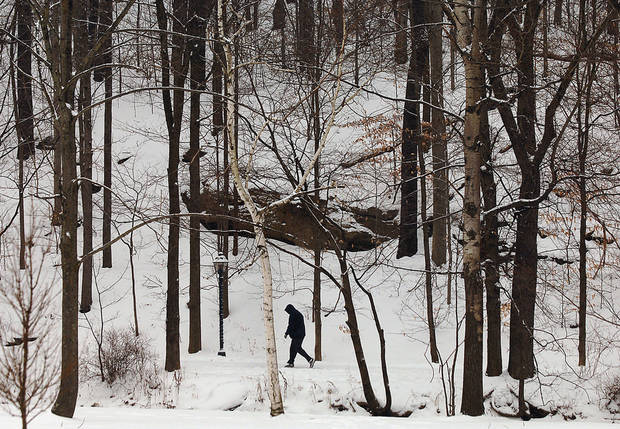 A walker treks along a snow-covered trail at The South Abington Township Park and Recreation Center in Chinchilla, Pa., Saturday, Dec. 29, 2012. Photo by Butch Comegys, The Scranton Times-Tribune/AP <strong>Butch Comegys</strong>