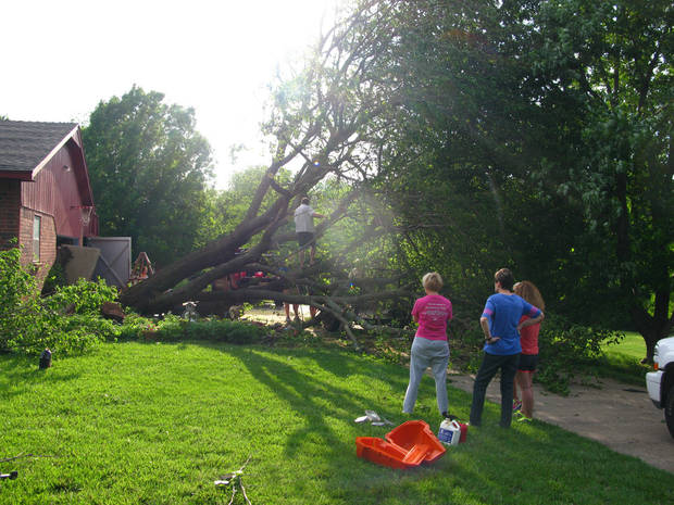 Friends and neighbors watch work going on to cut up a 35-year-old tree uprooted during the storm in the Hidden Valley addition in southeast Edmond. Photo by Lillie-Beth Brinkman