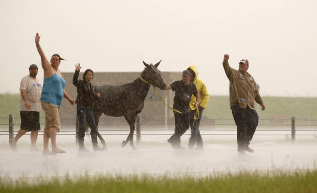 People stop traffic to help one of several loose horses across I-40 just east of 81 in El Reno, Okla., after a tornado moved through the area on Friday, May 31, 2013. Photo by Jim Beckel, The Oklahoman