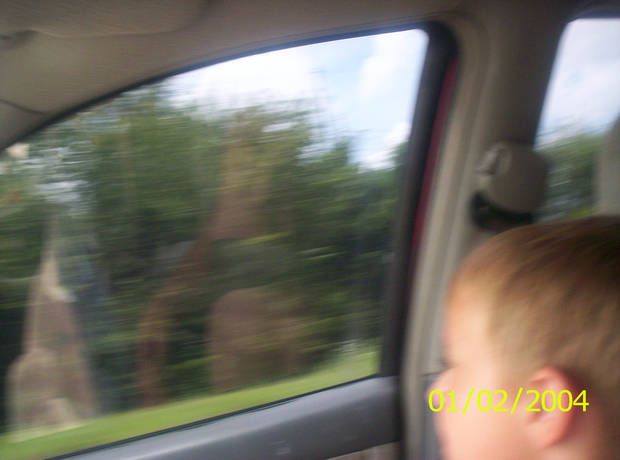 traveling down the road KASH<br/><b>Community Photo By:</b> MOM tamara<br/><b>Submitted By:</b> Tama, Midwest