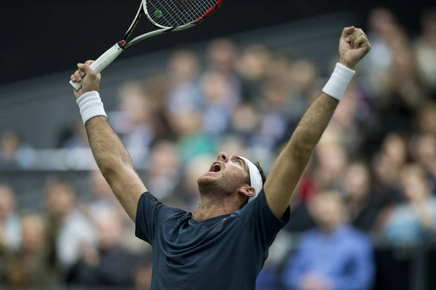 Argentina's Juan Martin del Potro celebrates winning against Julien Benneteau of France in two sets, 7-6, 6-3, in the final of the ABN AMRO world tennis tournament at Ahoy Arena in Rotterdam, Netherlands, Sunday Feb. 17, 2013.  (AP Photo/Peter Dejong)