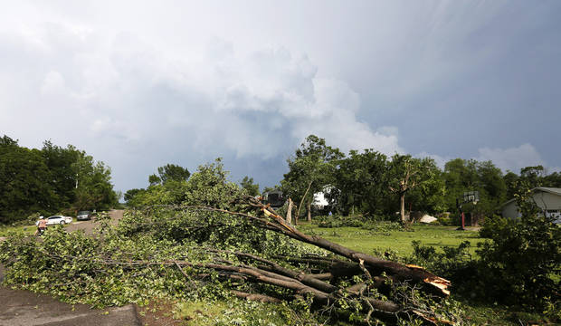 Fallen trees rest along Old Farm Rd. after a tornado moved through Edmond, Okla., Sunday, May 19, 2013. Photo by Nate Billings, The Oklahoman
