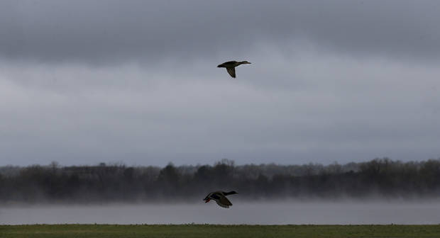 Ducks fly in the air as fog rolls off Lake Hefner during a rainstorm, Wednesday, April 10, 2013, in Oklahoma City. Photo by Sarah Phipps, The Oklahoman