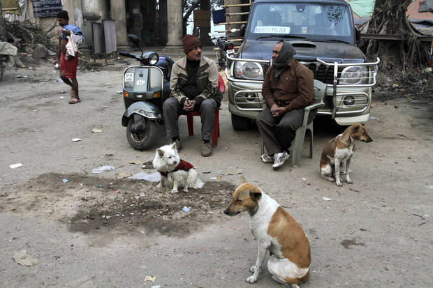 Two plainclothes policemen talk as they sit at a mobile outpost on a cold winter morning in Kolkata, India, Friday, Jan. 11, 2013. More than 100 people have died of exposure as several parts of India deal with historically cold temperatures. (AP Photo/Bikas Das)