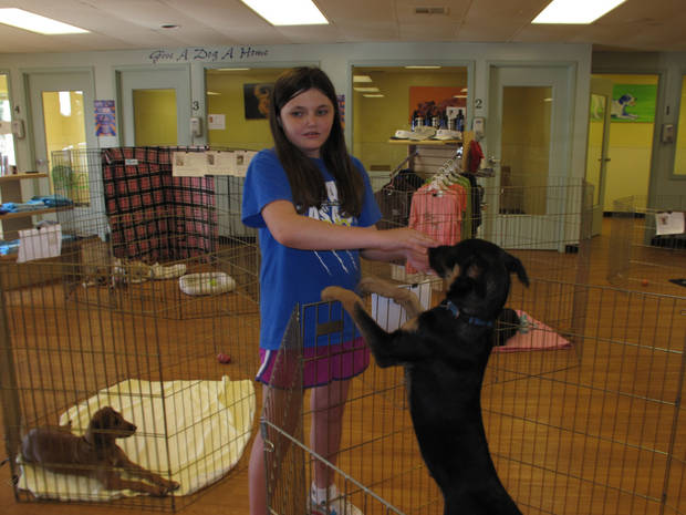 Rachel Rose of Oklahoma City visits with a dog at the Central Oklahoma Humane Society's Adoption Center, 7500 N Western.Photo by Carla Hinton <strong></strong>