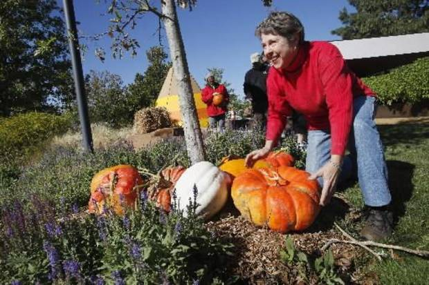 Volunteer Barbara Roberts placing pumpkins while decorating the Children's Garden for Pumpkinville during Halloween at the Myriad Gardens in Oklahoma City Monday, Oct. 8, 2012. Pumpkinville in the Children's Garden opens from 9 a.m. to 8 p.m. daily starting today. Photo by Paul B. Southerland, The Oklahoman