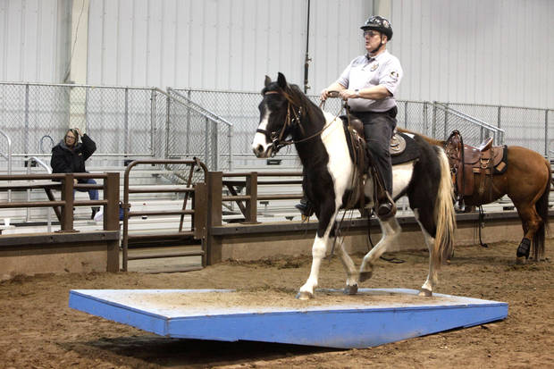 Assistant Team Leader Robin Davidson takes his horse over a moving platform during an annual training event to qualify deputies and horses for the Oklahoma County Sheriff's Office Mounted Patrol Division at State Fair Park in Oklahoma City, OK, Saturday, March 5, 2011. By Paul Hellstern, The Oklahoman ORG XMIT: KOD