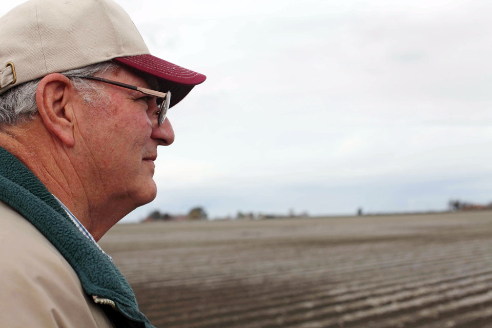 Photo - In this March 6, 2013 photo, farmer Frank DelTesta gazes at the field where he recently planted some sugar beets that will be processed into ethanol at a demonstration plant that's under construction, in Tranquility, Calif. DelTesta, who used to grow 150-acres of beets before the local sugar mill shut down, hopes his farming cooperative can build the nation's first commercial-scale beet bio-refinery. (AP Photo/Gosia Wozniacka)