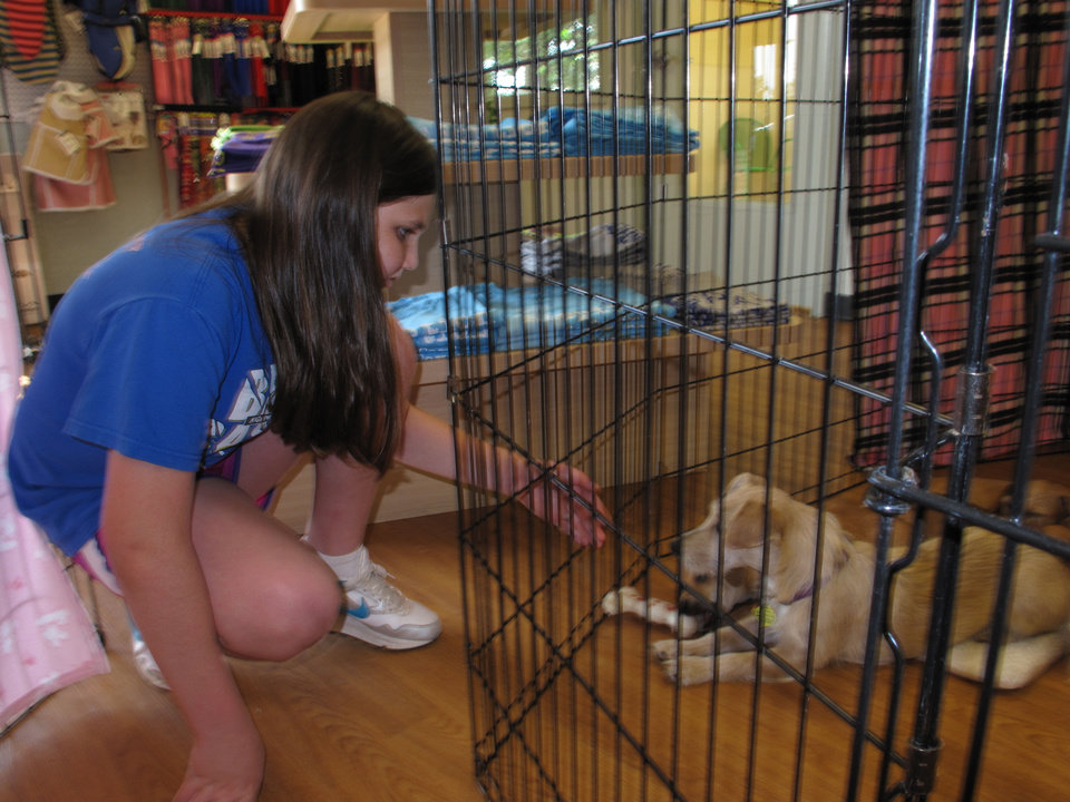 Rachel Rose of Oklahoma City visits with a puppy at the Central Oklahoma Humane Society's Adoption Center, 7500 N Western. The humane society is the recipient of Rose's bat mitzvah community service project. Photo by Carla Hinton <strong></strong>