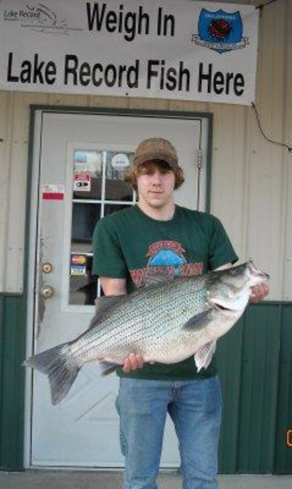 Photo -  This 20.5-pound striped bass hybrid was caught March 4 from Hudson Lake below the Pensacola Dam on a spinning rod by Chad Blackman of Langley. It is the new lake record.