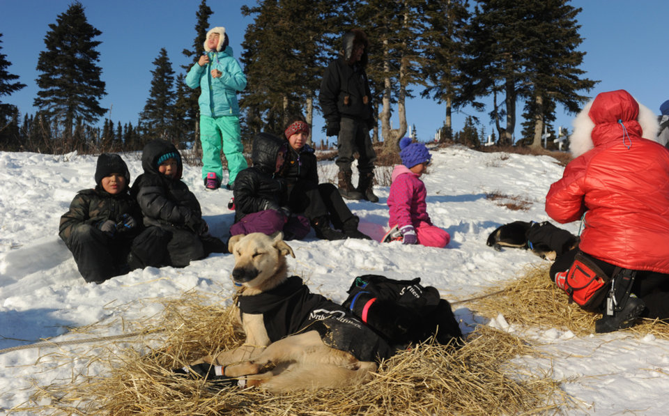 Photo - Village children watch as Iditarod musher Martin Buser, from Big Lake, Alaska, cares for his dog team at the Koyuk checkpoint during the 2014 Iditarod Trail Sled Dog Race on Sunday, March 9, 2014. (AP Photo/The Anchorage Daily News, Bob Hallinen)