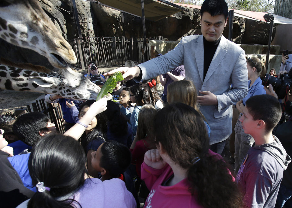 Photo - Former Houston Rockets basketball player Yao Ming joins a group of schoolchildren to feed the giraffes at the Houston Zoo on Thursday, Feb. 14, 2013, in Houston. Yao has been working to bring awareness to the need to protect endangered species, a cause he's undertaken since retiring from basketball in 2011.(AP Photo/Pat Sullivan)