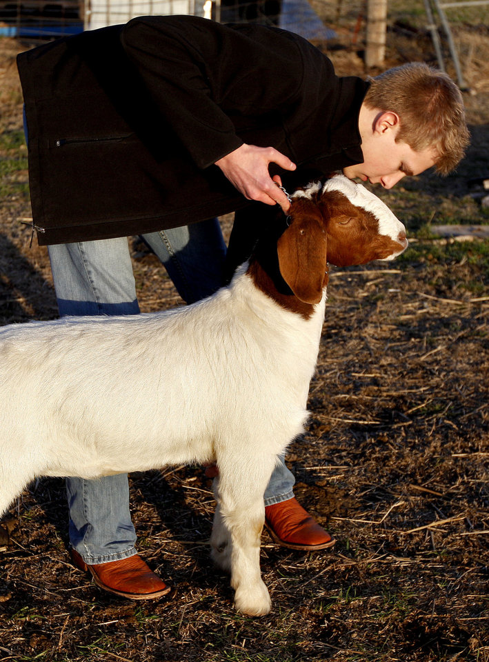 Photo - Carson Lough works with a goat in Hennessey on Thursday. Photo by Sarah Phipps, The Oklahoman  SARAH PHIPPS