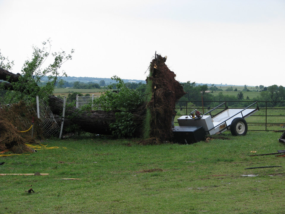 Photo - An uprooted tree in Jerry Taylor's yard south of Covington. Taylor's house, on Bison Road a mile east of State Highway 74, was heavily damaged and two horses are missing, but Taylor, 55, was not hurt. By Michael Kimball