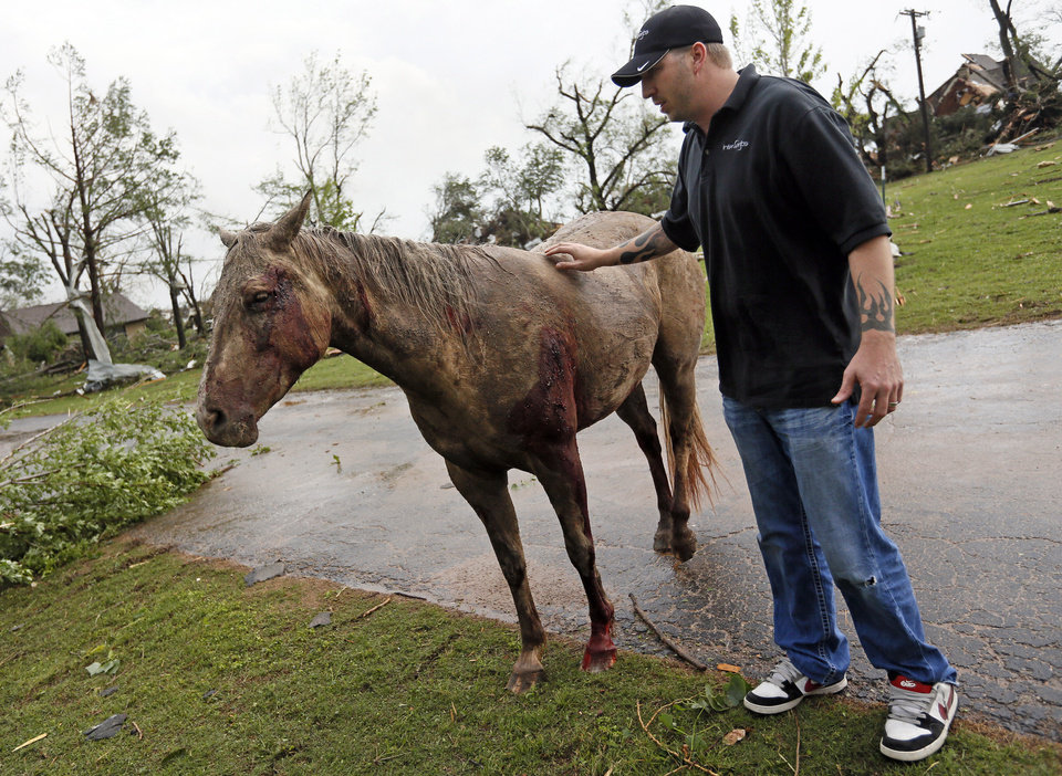 TORNADO DAMAGE / TORNADO AFTERMATH / DEBRIS / INJURY: Will Lyles tries to comfort an injured horse he found near SW 149th and Western while walking to his neighborhood to see if his home was damaged after a tornado struck south Oklahoma City and Moore, Okla., Monday, May 20, 2013. Photo by Nate Billings, The Oklahoman