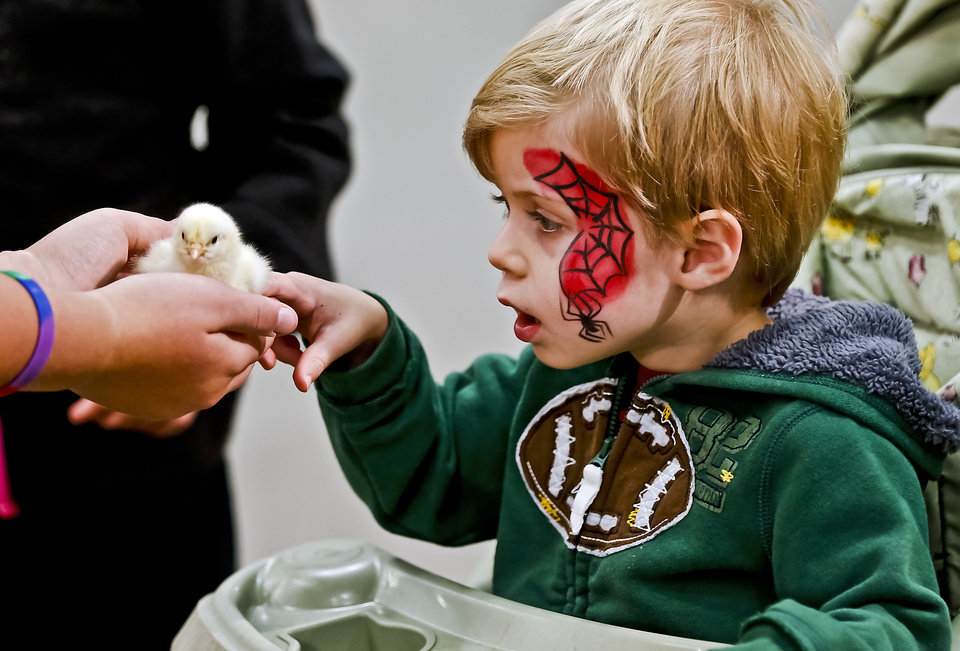 Photo - Joseph Horn touches a baby chick in the AGtropolis venue at the Oklahoma State Fair at State Fair Park on Friday, Sept. 14, 2012, in Oklahoma City, Oklahoma.  Photo by Chris Landsberger, The Oklahoman