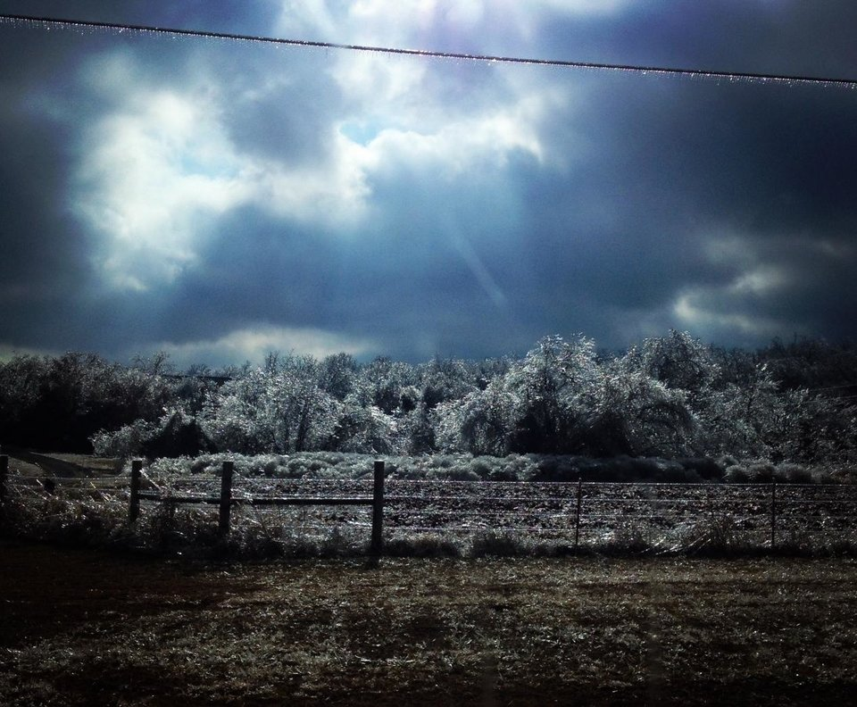 Ice on an Oklahoma Barbed Wire Fence. Photo by Dusty Dees