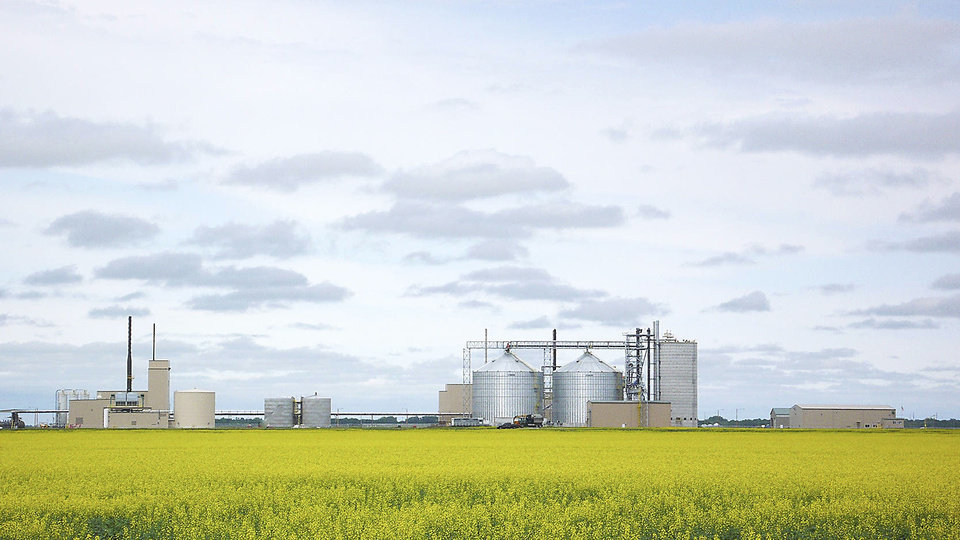 Northstar Agri Industries canola refinery plant is shown in Hallock, Minn., amid a field of canola. PHOTO PROVIDED
