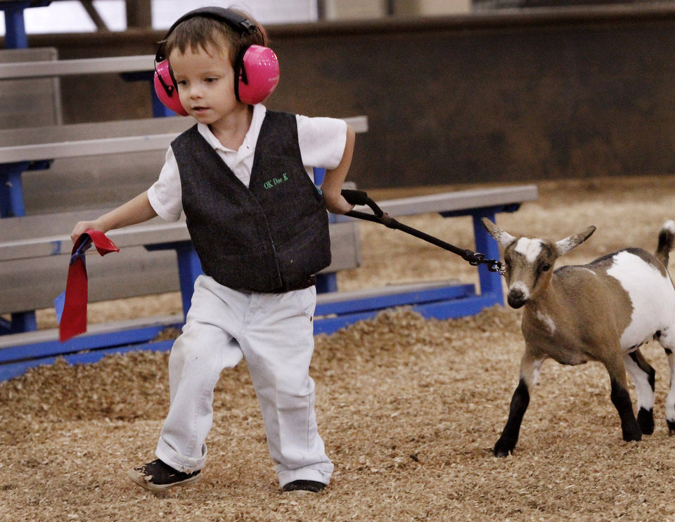 Photo - Paul Goodchild, 4, of Norman, leads Emmy, his Nigerian Dwarf goat after showing her in the three to six month class during goat judging at the Oklahoma State Fair on Wednesday, Sep. 19, 2012. This is Goodchild's first time to show an animal at the state fair. He holds two ribbons in his right hand--Emmy won a second place ribbon; Paul was awarded a first place ribbon for showmanship.  Photo by Jim Beckel, The Oklahoman.