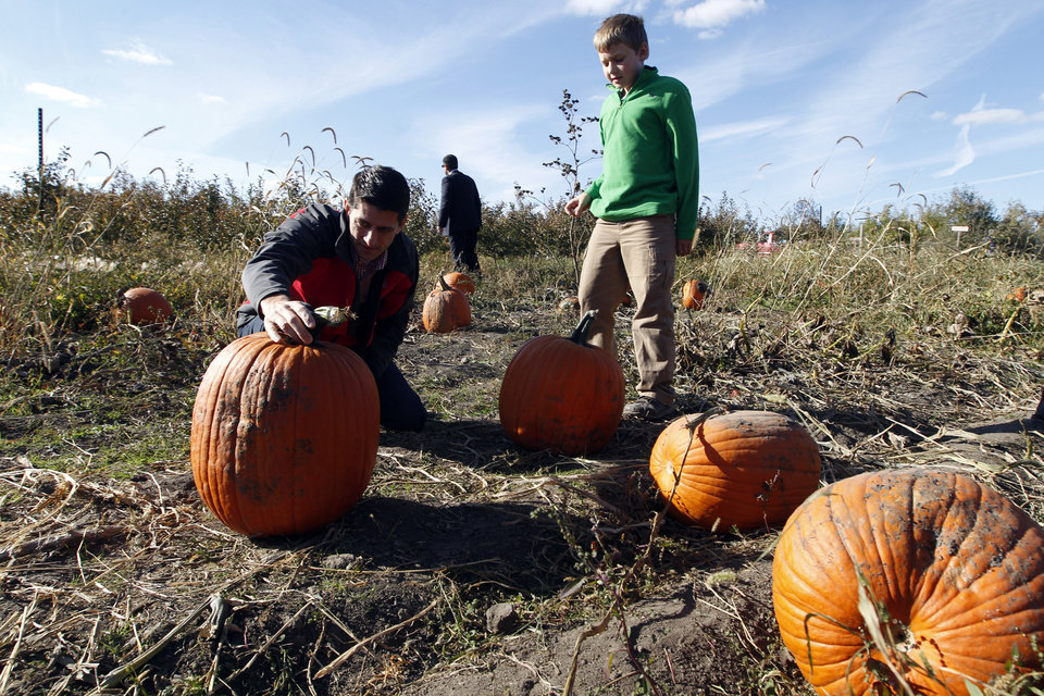 Republican vice presidential candidate, Rep. Paul Ryan, R-Wis., helps his son Charlie pick a pumpkin at during at the Apple Holler farm pumpkin patch, Sunday, Oct. 7, 2012 in Sturtevant, Wis. (AP Photo/Mary Altaffer)