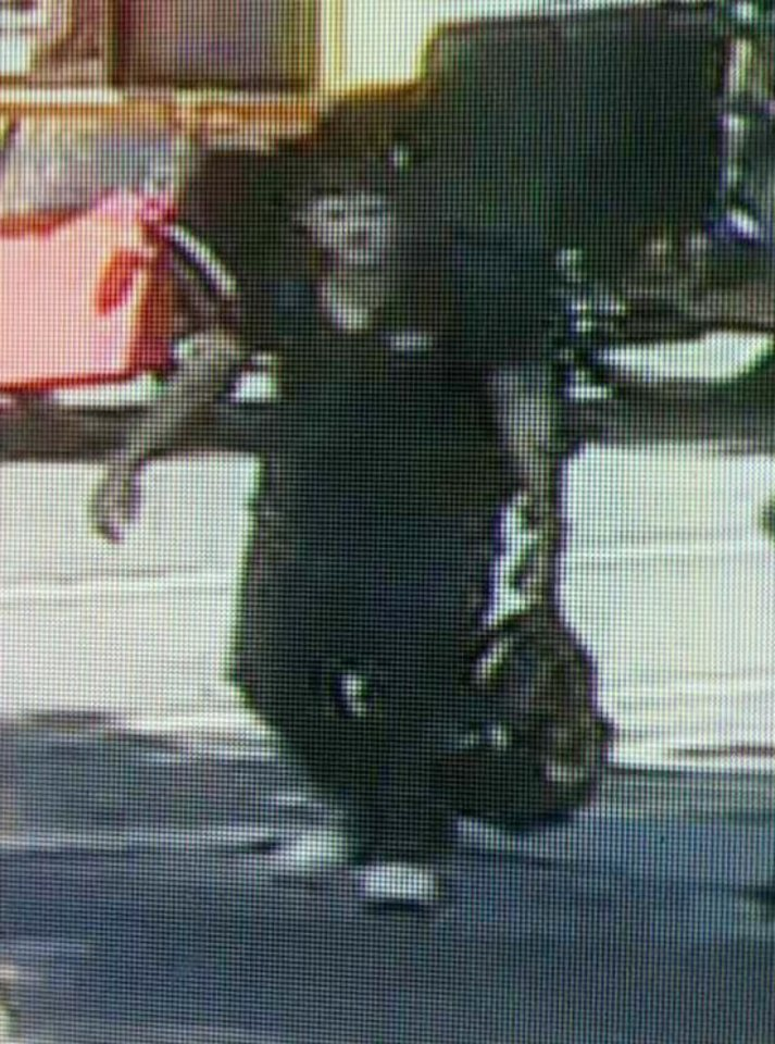 Photo -   This image taken from surveillance video and provided by the New York City Police Department on Wednesday, Sept. 12, 2012, shows a man believed to have mugged and sexually assaulted a 73 year old woman in New York's Central Park. The woman was attacked about 11 a.m. while bird watching near the park's tranquil Strawberry Fields that serves as a memorial to John Lennon. (AP Photo/New York Police Department)