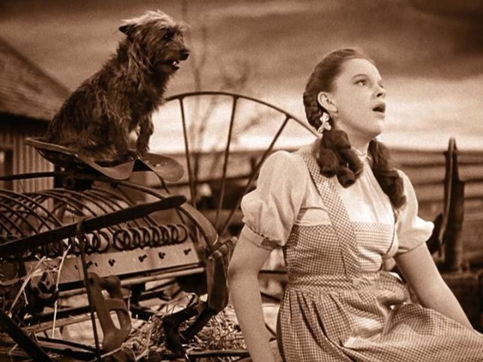 """Photo -  Dorothy, portrayed by Judy Garland, sings the iconic song """"Over the Rainbow"""" as her dog Toto looks on in this scene from the movie classic """"The Wizard of Oz."""" Photo provided"""